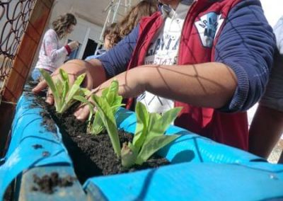 Alumnos plantando en huerto escolar