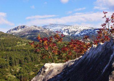 Jabalcuz nevado